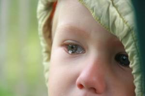 Лишение родительских прав за неуплату алиментов - какой порядок оформления и условия, документы